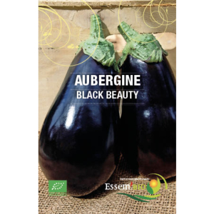Aubergine Black Beauty Bio