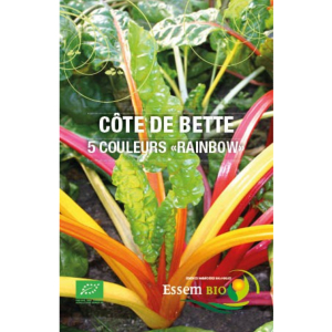 Côte de bette 5 couleurs « Rainbow » Bio