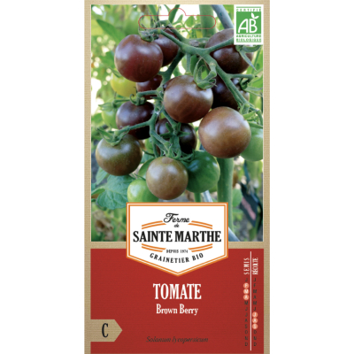 Tomate Brown Berry bio
